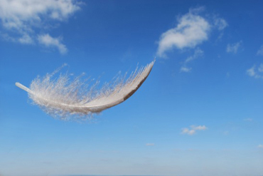 photodune-502193-feather-floating-in-the-summers-sky-xs